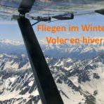 Voler en hiver  (1/3) - congélation du carburateur